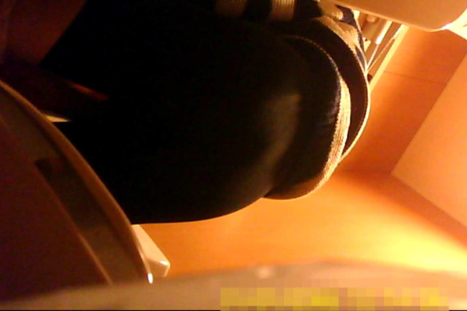 魅惑の化粧室~禁断のプライベート空間~vol.6 チラ歓迎 ワレメ無修正動画無料 75pic 43