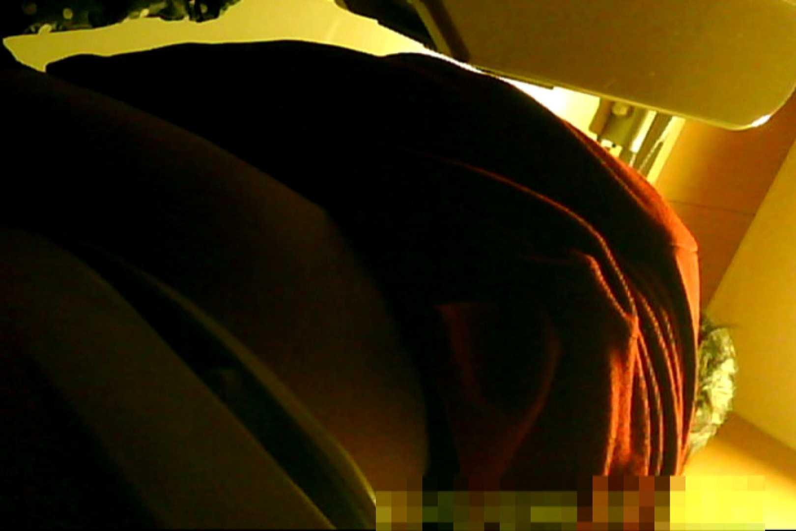 魅惑の化粧室~禁断のプライベート空間~vol.10 盗撮師作品 エロ無料画像 102pic 38