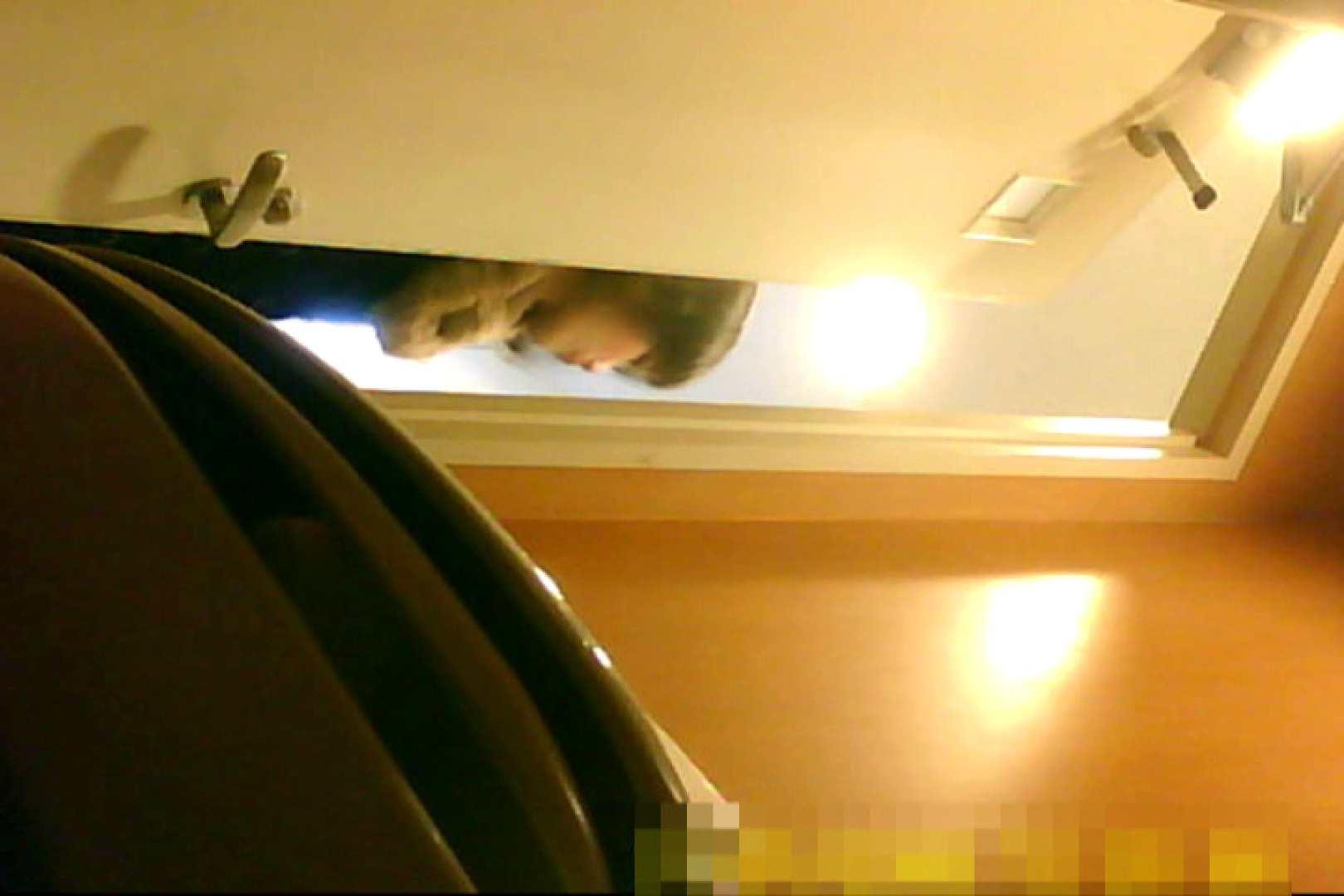 魅惑の化粧室~禁断のプライベート空間~15 お姉さん丸裸  103pic 44