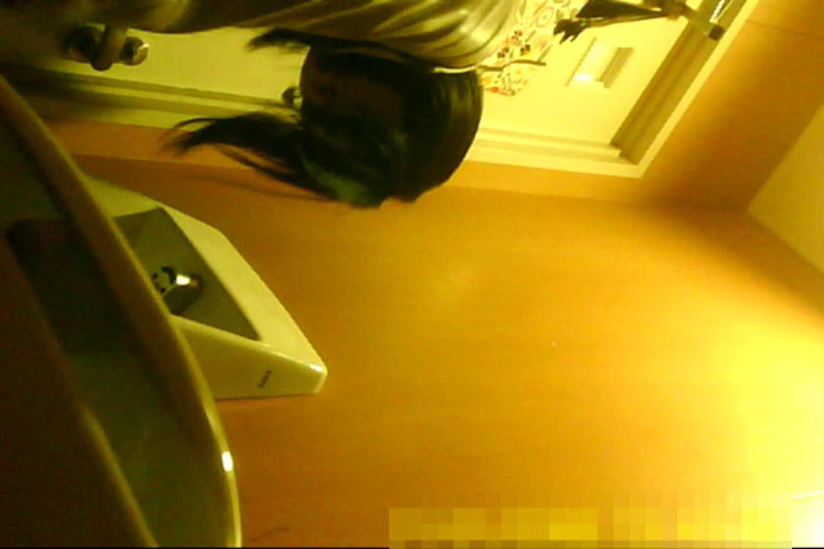 魅惑の化粧室~禁断のプライベート空間~29 プライベート  87pic 28