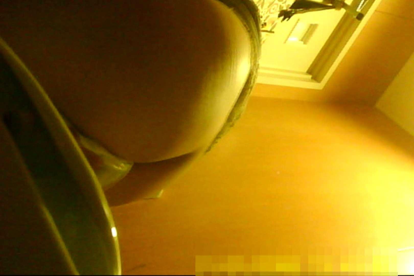 魅惑の化粧室~禁断のプライベート空間~29 プライベート | 盗撮師作品  87pic 33