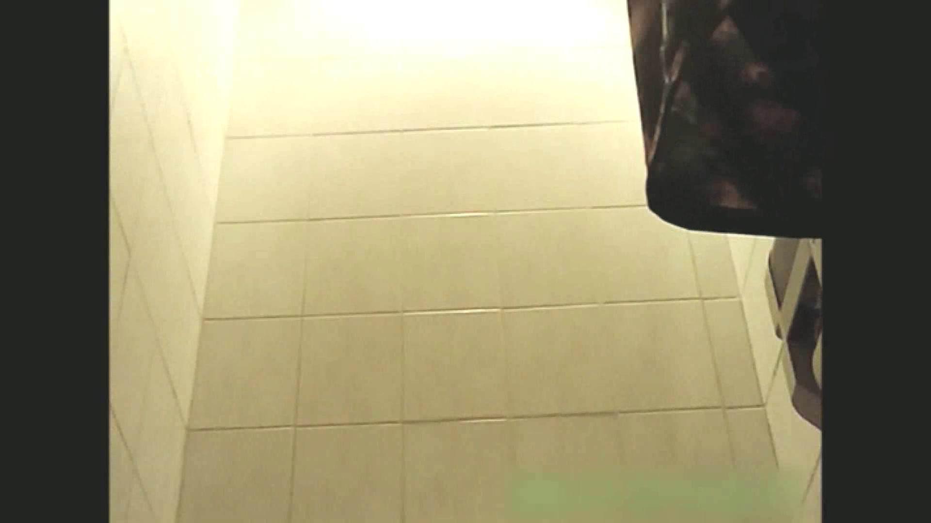 実録!!綺麗なお姉さんのトイレ事情・・・。vol.13 お尻 隠し撮りオマンコ動画紹介 105pic 23