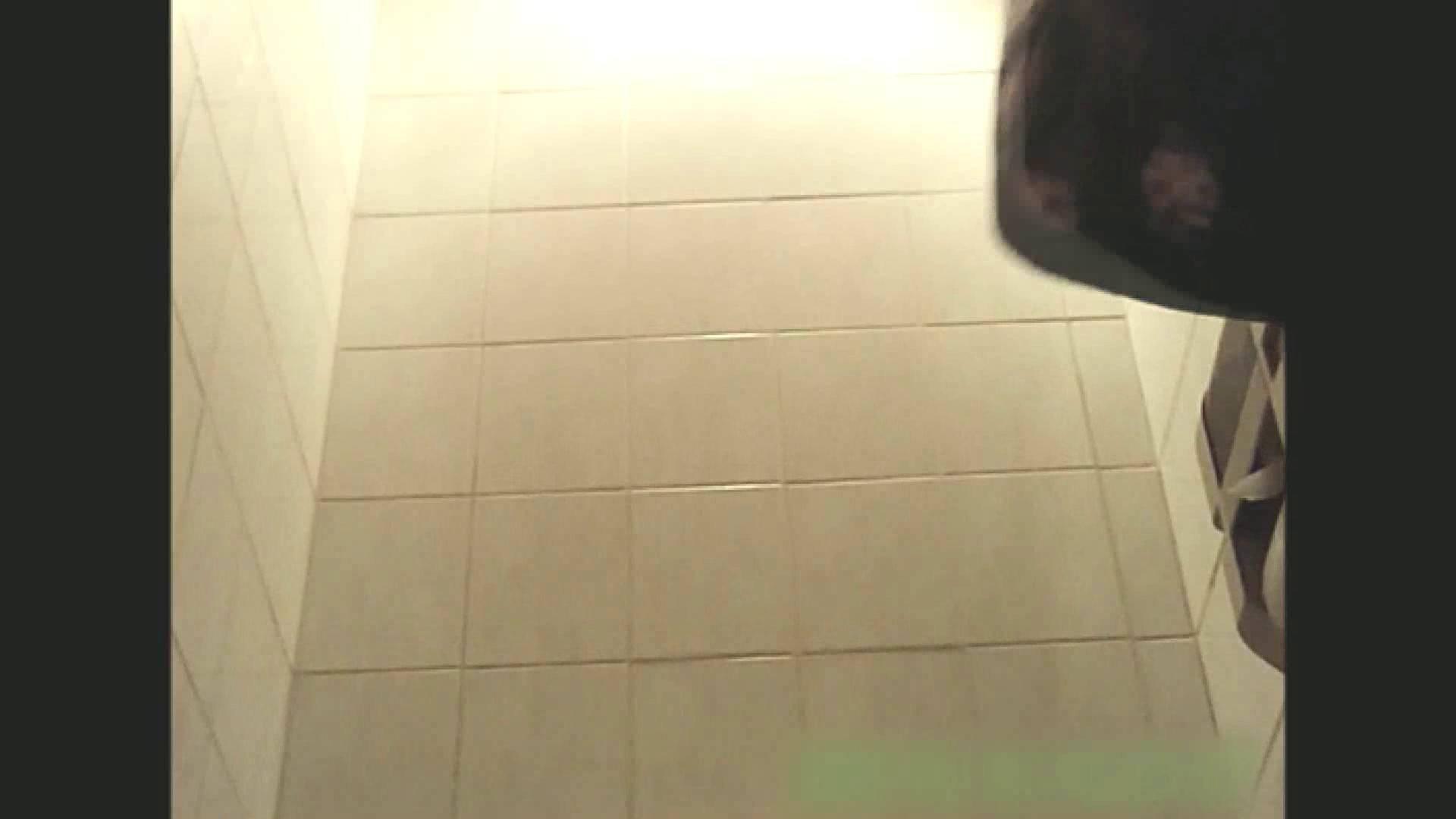 実録!!綺麗なお姉さんのトイレ事情・・・。vol.13 お尻 隠し撮りオマンコ動画紹介 105pic 79
