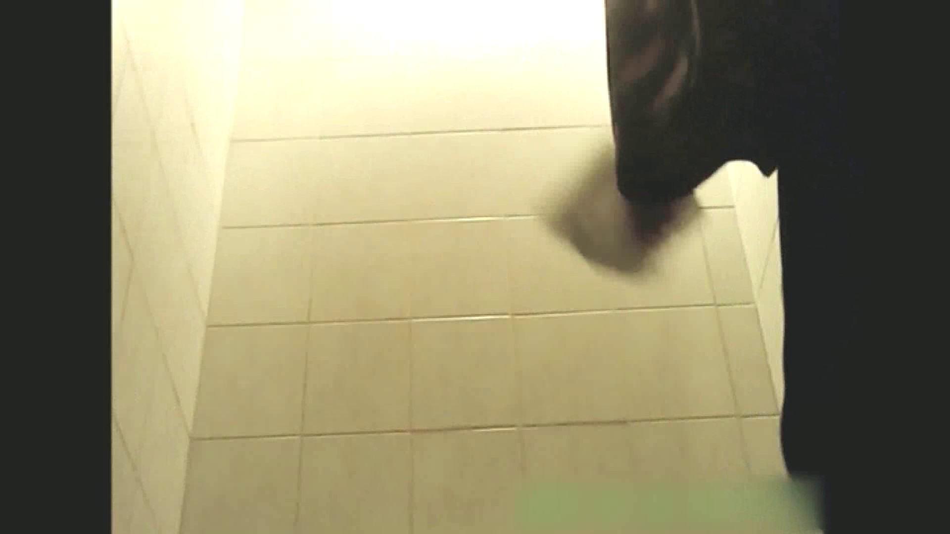 実録!!綺麗なお姉さんのトイレ事情・・・。vol.13 お尻 隠し撮りオマンコ動画紹介 105pic 83