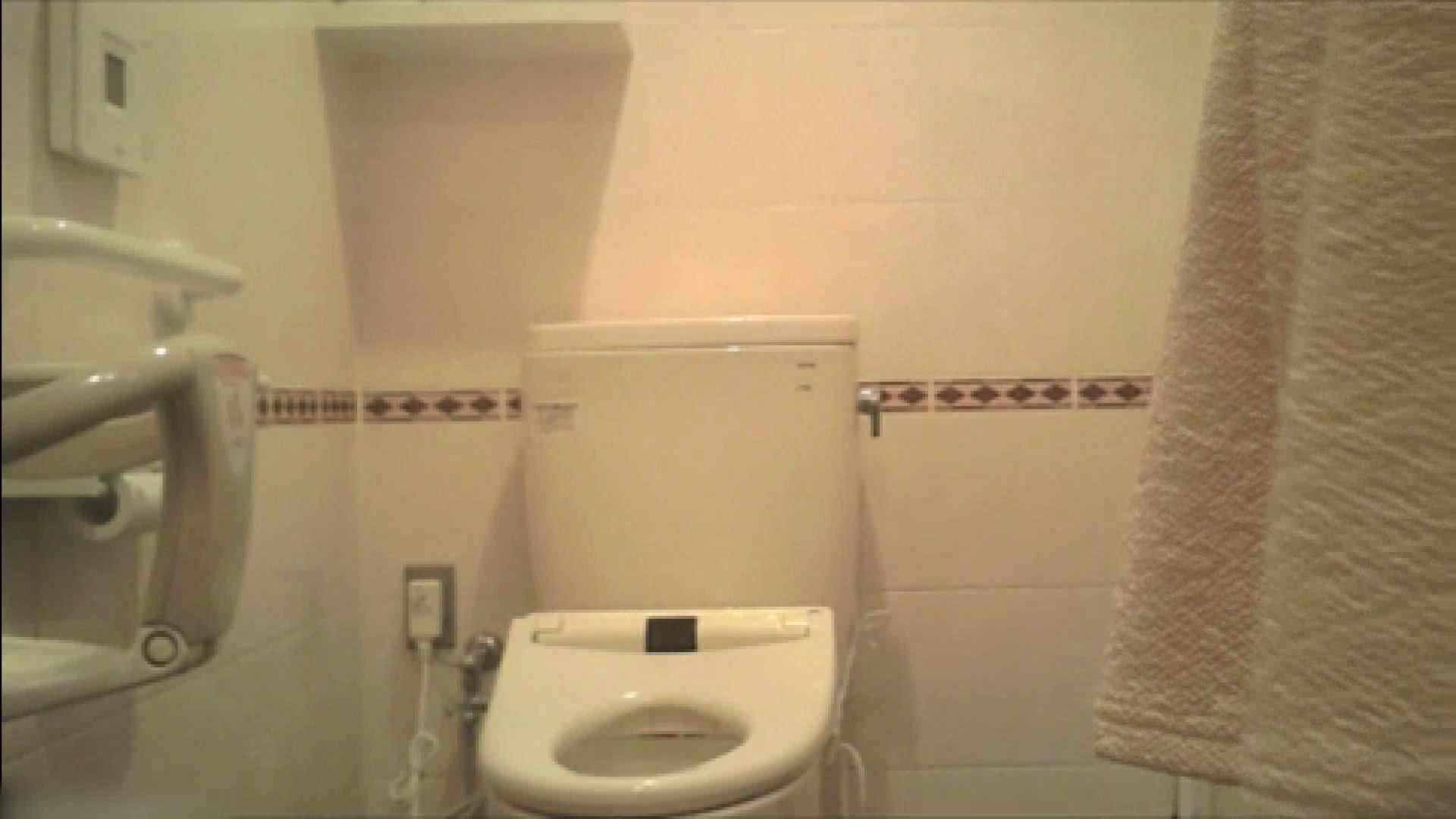 実録!!綺麗なお姉さんのトイレ事情・・・。vol.18 お尻   美しいOLの裸体  74pic 53