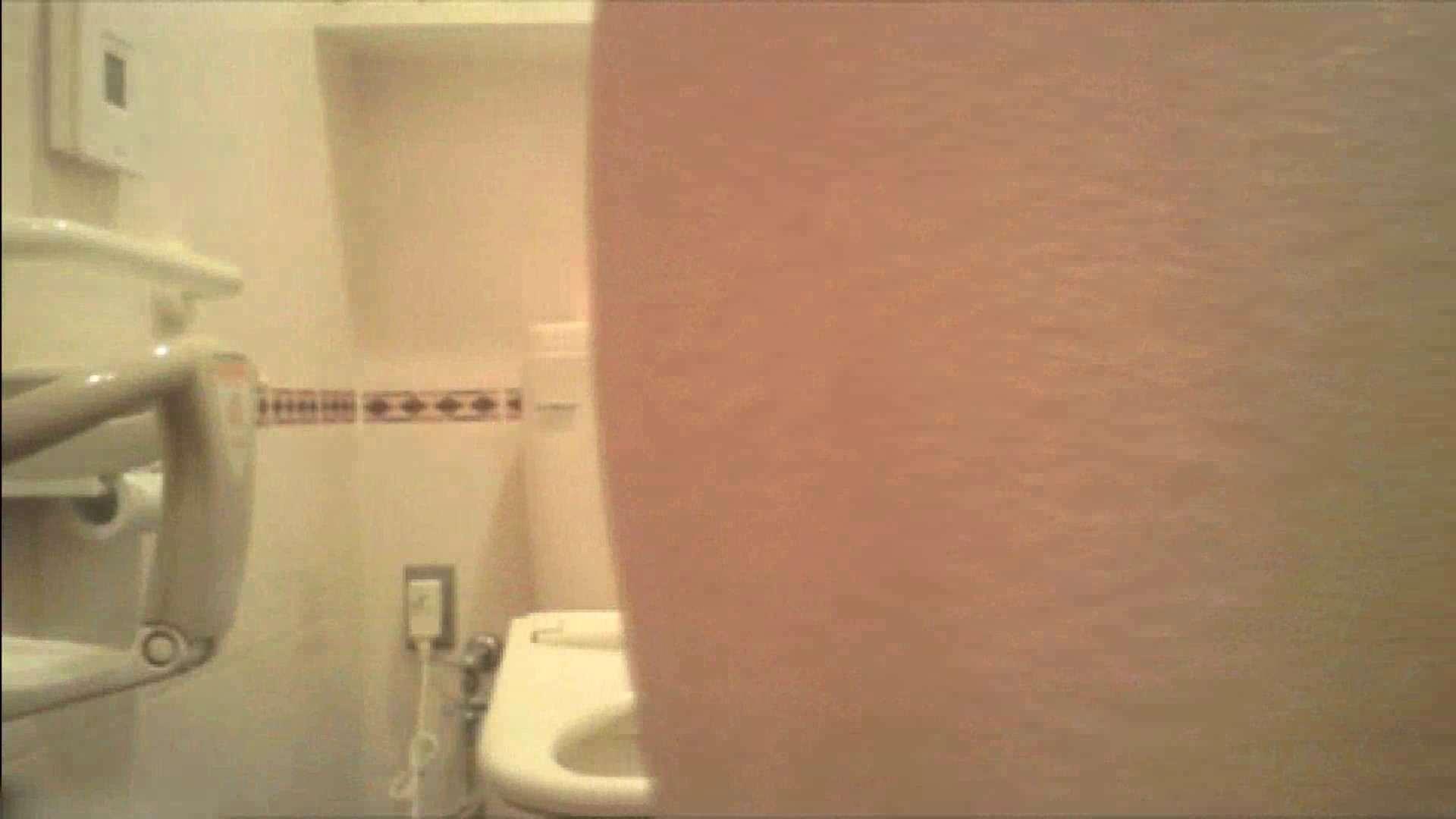 実録!!綺麗なお姉さんのトイレ事情・・・。vol.18 トイレ突入 オメコ無修正動画無料 74pic 55