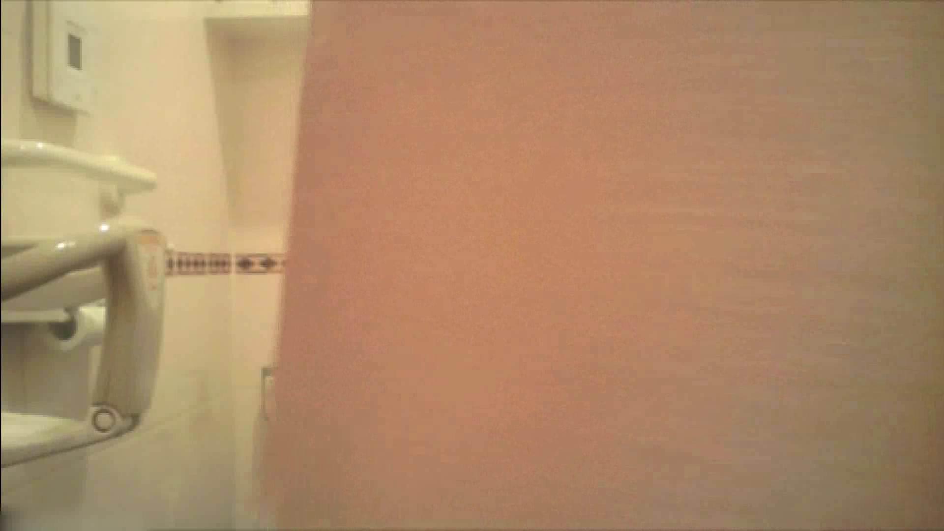実録!!綺麗なお姉さんのトイレ事情・・・。vol.18 トイレ突入 オメコ無修正動画無料 74pic 59