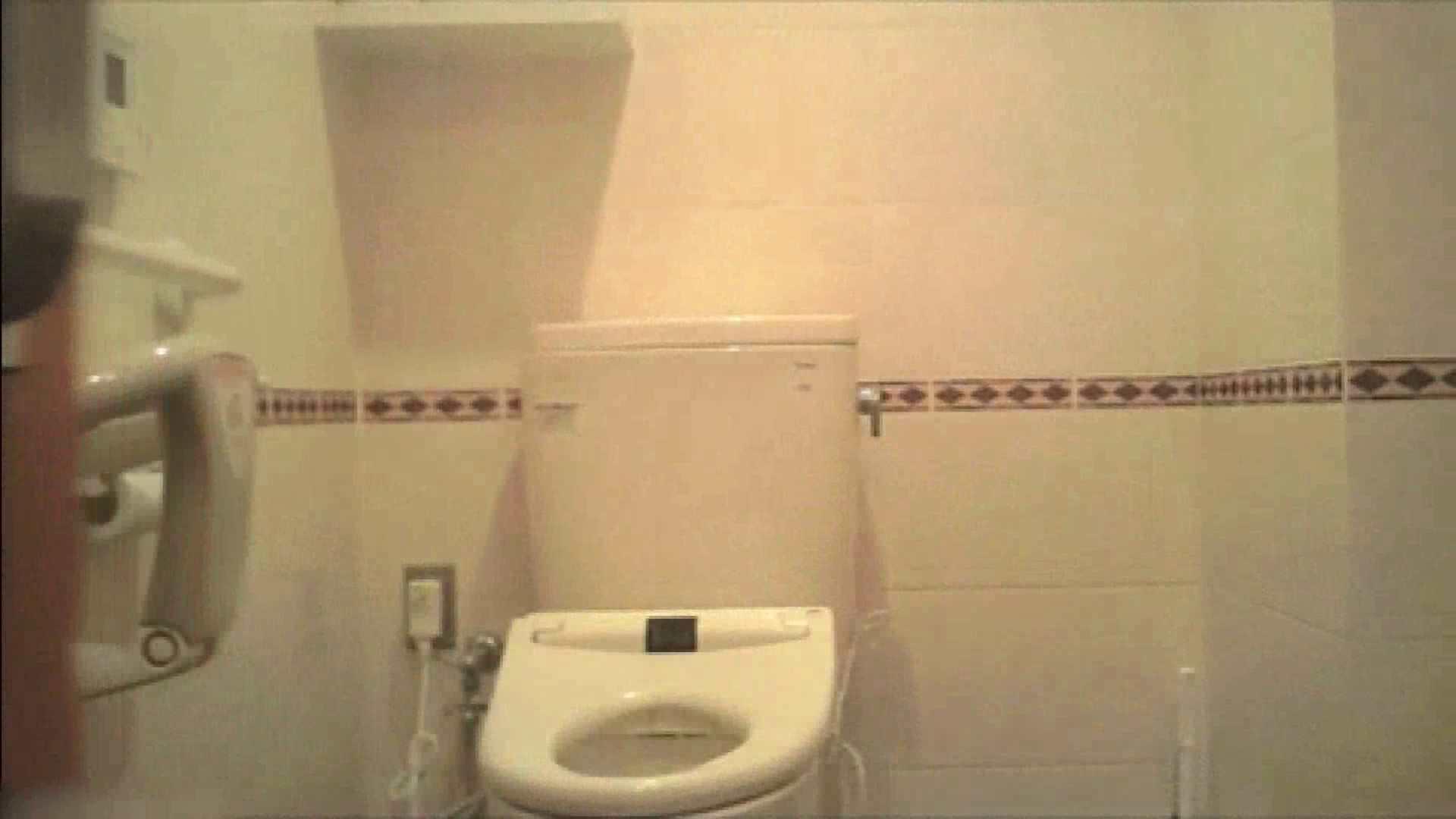 実録!!綺麗なお姉さんのトイレ事情・・・。vol.18 お尻   美しいOLの裸体  74pic 61