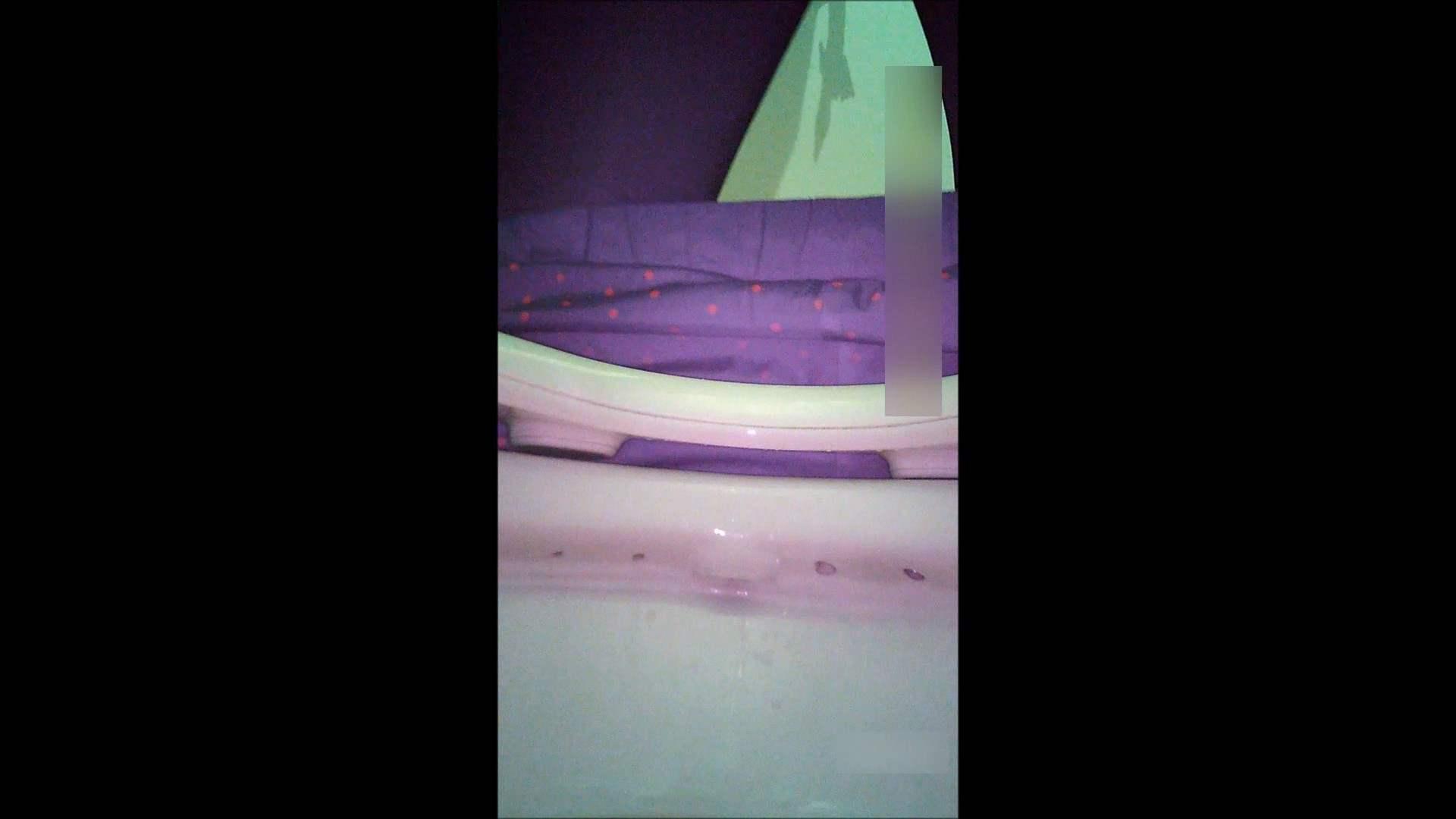 キレカワ女子大生の秘密の洗面所!Vol.051 洗面所突入 おまんこ動画流出 95pic 51