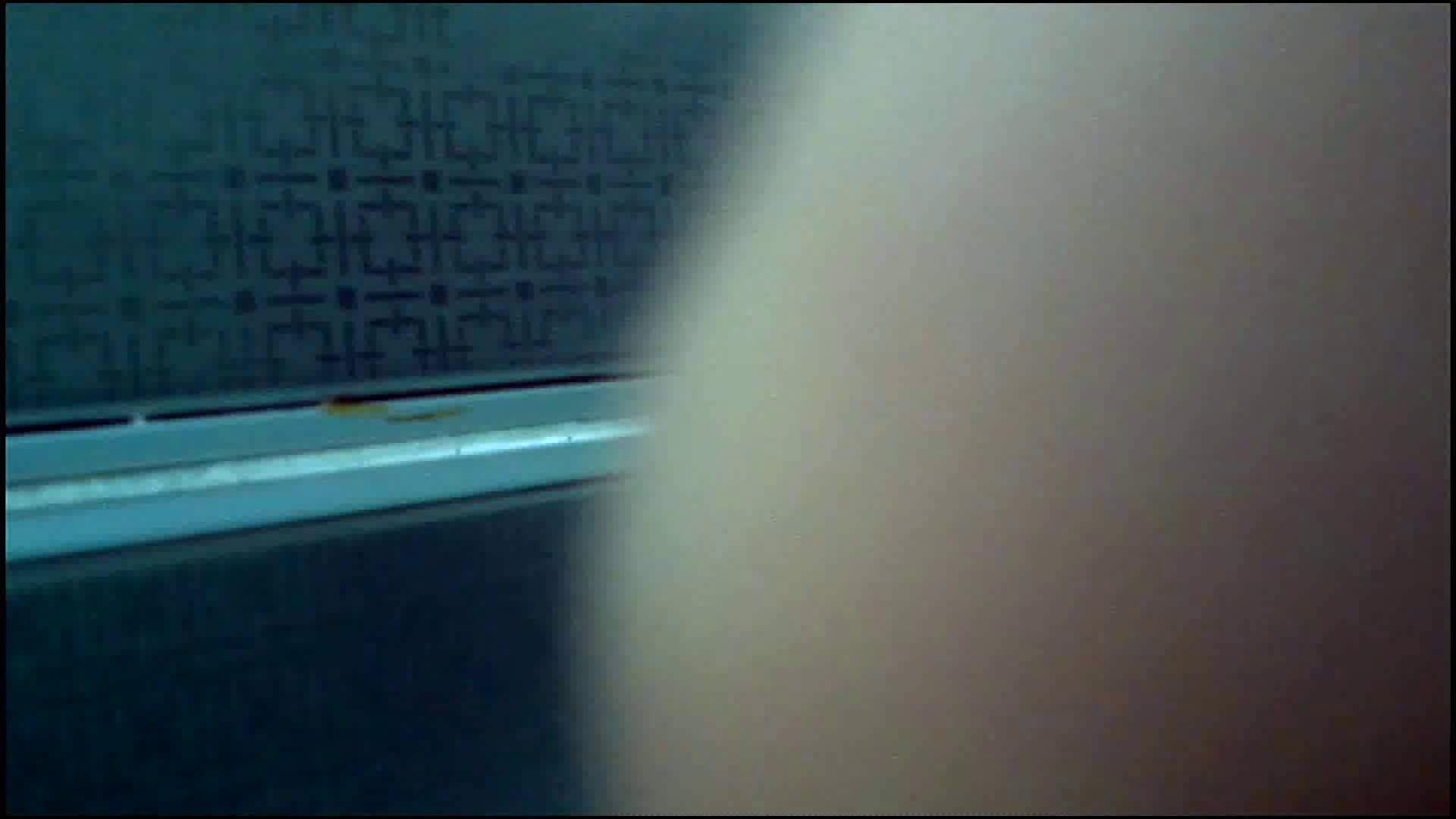 潜入!!韓国秘密のトイレ!Vol.15 潜入突撃 盗み撮り動画キャプチャ 95pic 88