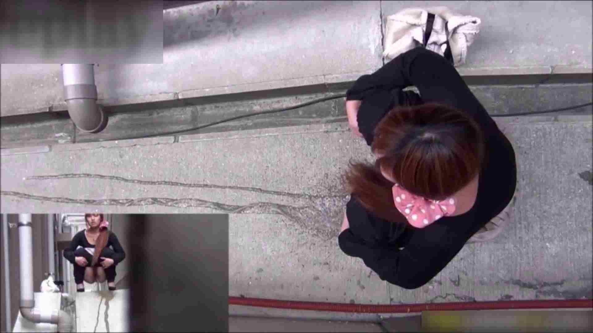 エッチ 熟女 洗面所盗撮~隣の美人お姉さんVol.09 ピープフォックス(盗撮狐)