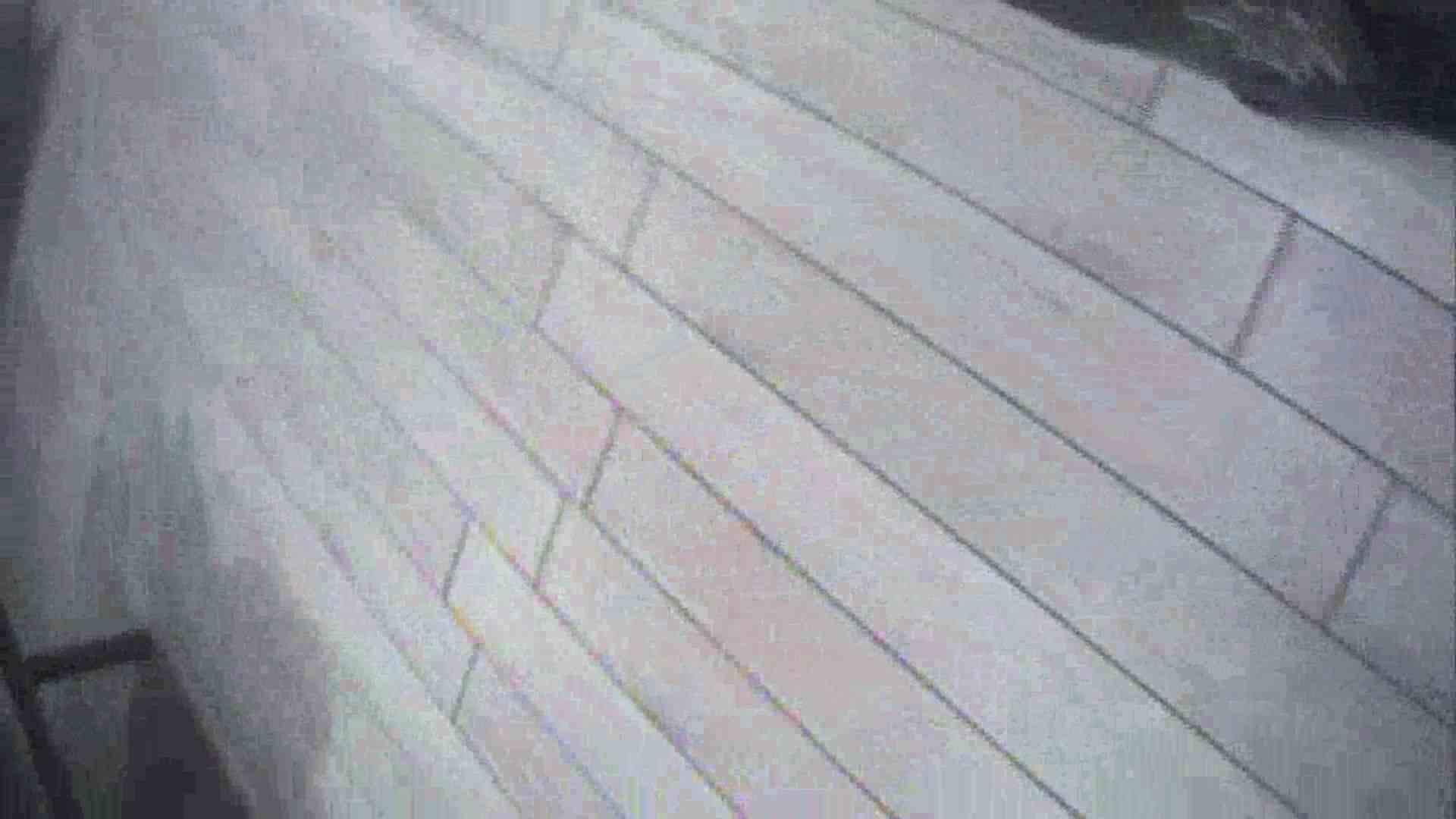 働く美女の谷間参拝 Vol.18 美しいOLの裸体 ワレメ無修正動画無料 94pic 14