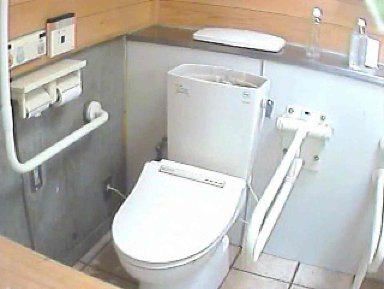 水着ギャル洋式洗面所 Vol.1 美しいOLの裸体 ワレメ動画紹介 83pic 2