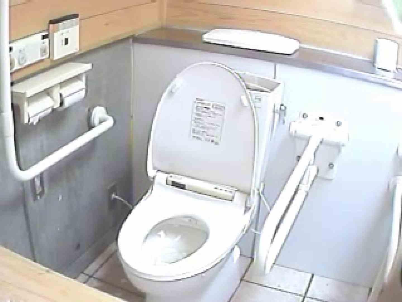 水着ギャル洋式洗面所 Vol.1 排泄隠し撮り のぞき動画画像 83pic 34