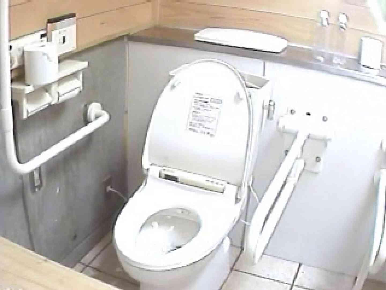 水着ギャル洋式洗面所 Vol.1 排泄隠し撮り のぞき動画画像 83pic 70