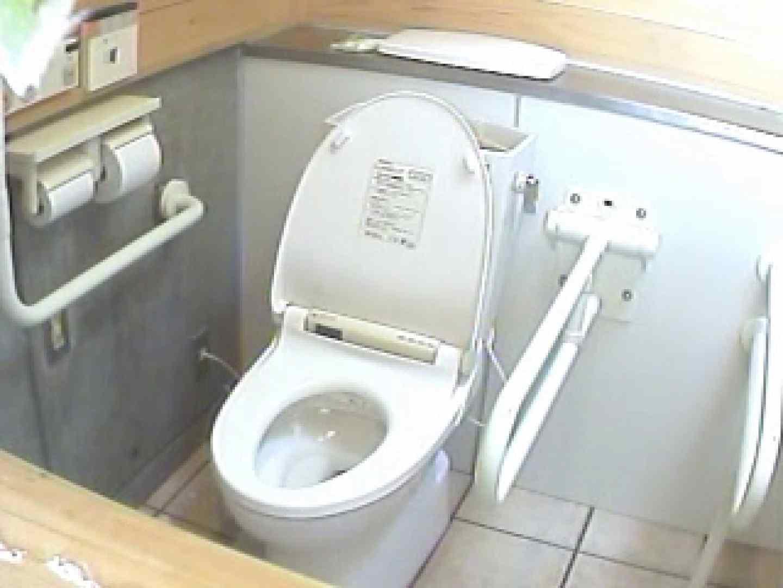 水着ギャル洋式洗面所 Vol.2 美しいOLの裸体 エロ無料画像 96pic 32