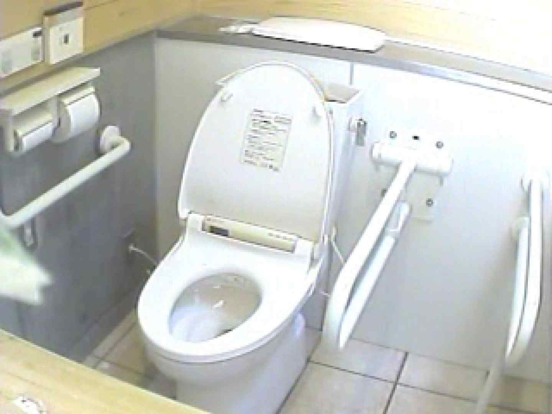 水着ギャル洋式洗面所 Vol.2 洗面所突入 盗み撮り動画キャプチャ 96pic 64