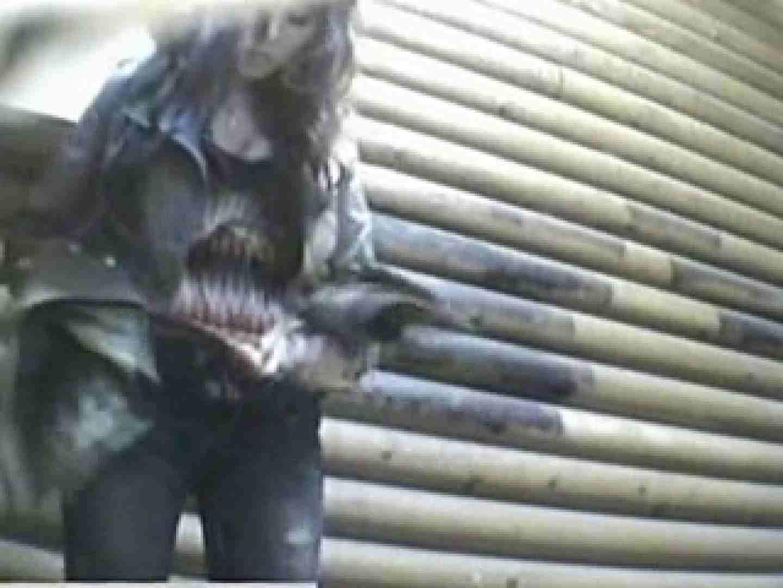 公園洗面所電波盗撮Vol.7 美しいOLの裸体 オメコ動画キャプチャ 104pic 74