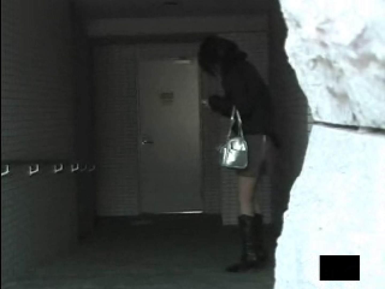 エッチ 熟女|どこまでもスカート切り裂きますVOL.1|ピープフォックス(盗撮狐)