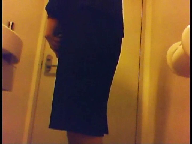 漏洩厳禁!!某王手保険会社のセールスレディーの洋式洗面所!!Vol.1 美しいOLの裸体  79pic 16
