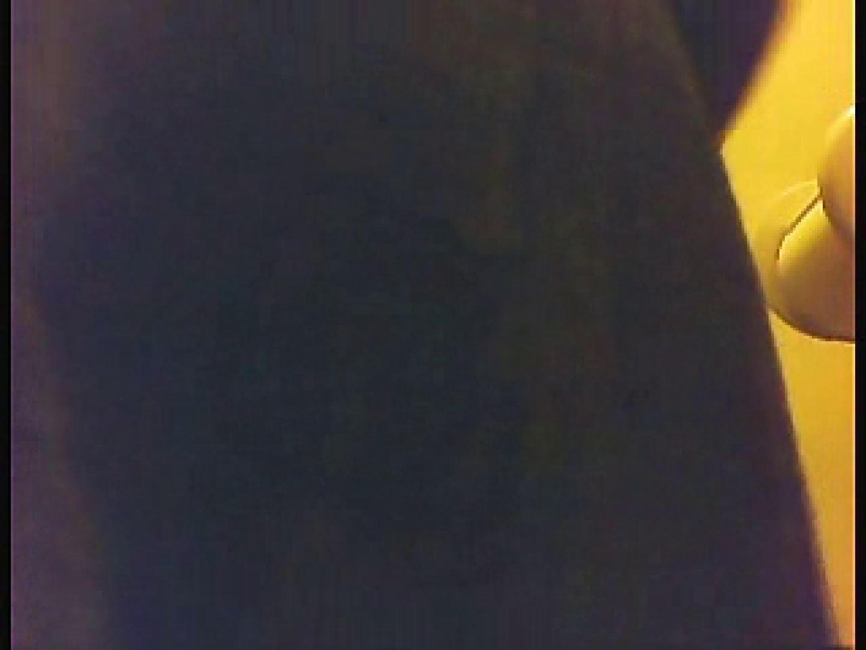 漏洩厳禁!!某王手保険会社のセールスレディーの洋式洗面所!!Vol.1 洗面所突入 AV無料 79pic 46