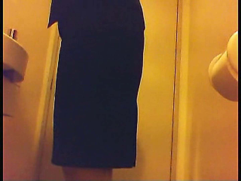 漏洩厳禁!!某王手保険会社のセールスレディーの洋式洗面所!!Vol.2 盗撮師作品  71pic 10