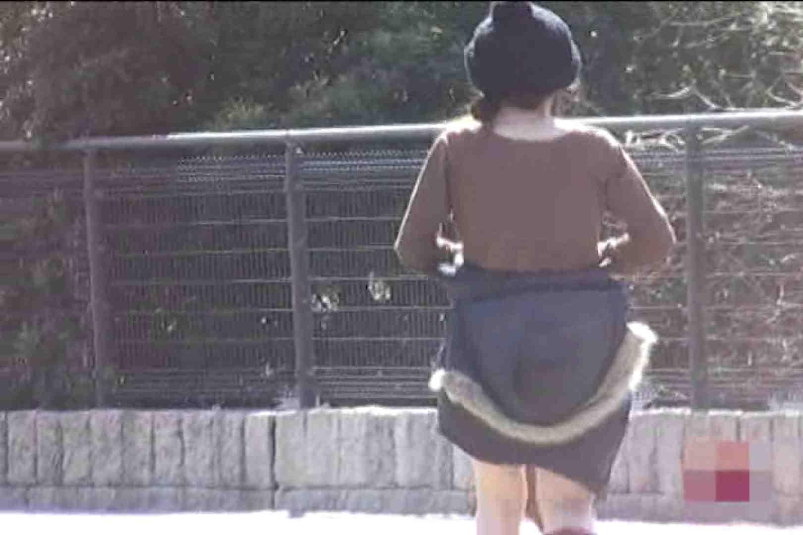 検証!隠し撮りスカートめくり!!Vol.9 美しいOLの裸体  101pic 78