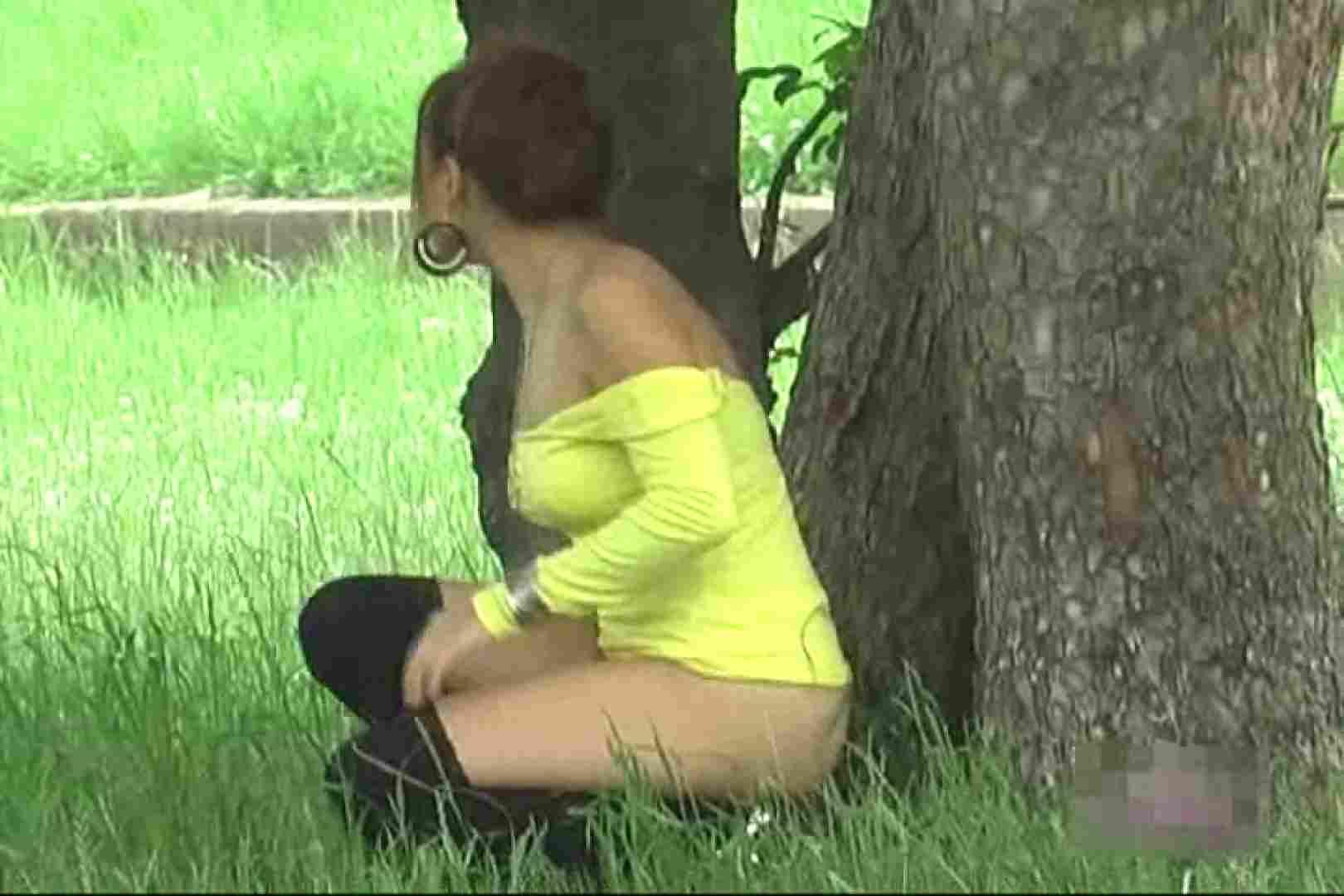 検証!隠し撮りスカートめくり!!Vol.2 美しいOLの裸体  103pic 28