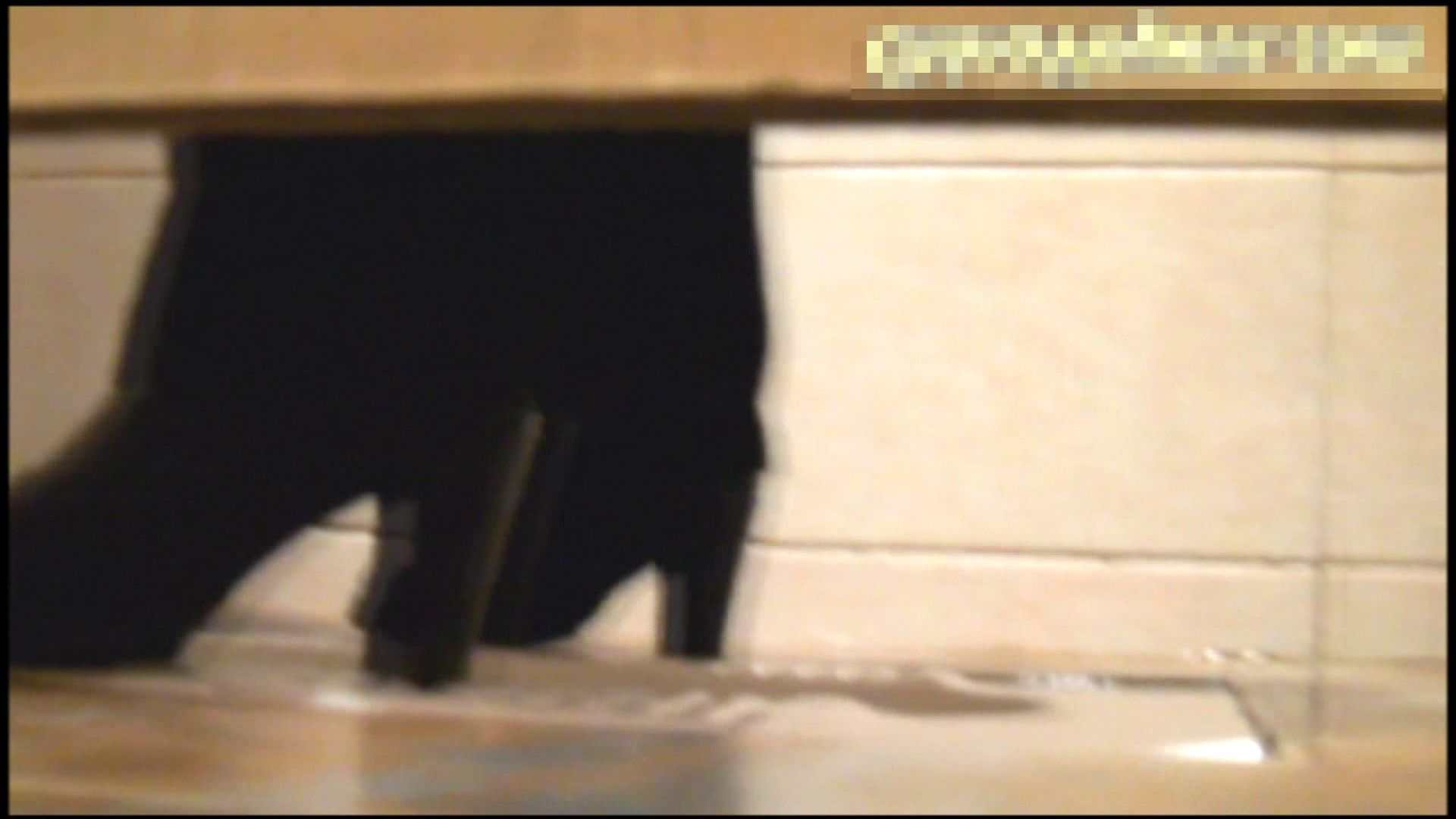 エッチ 熟女 洗面所で暗躍する撮師たちの潜入記Vol.21 ピープフォックス(盗撮狐)