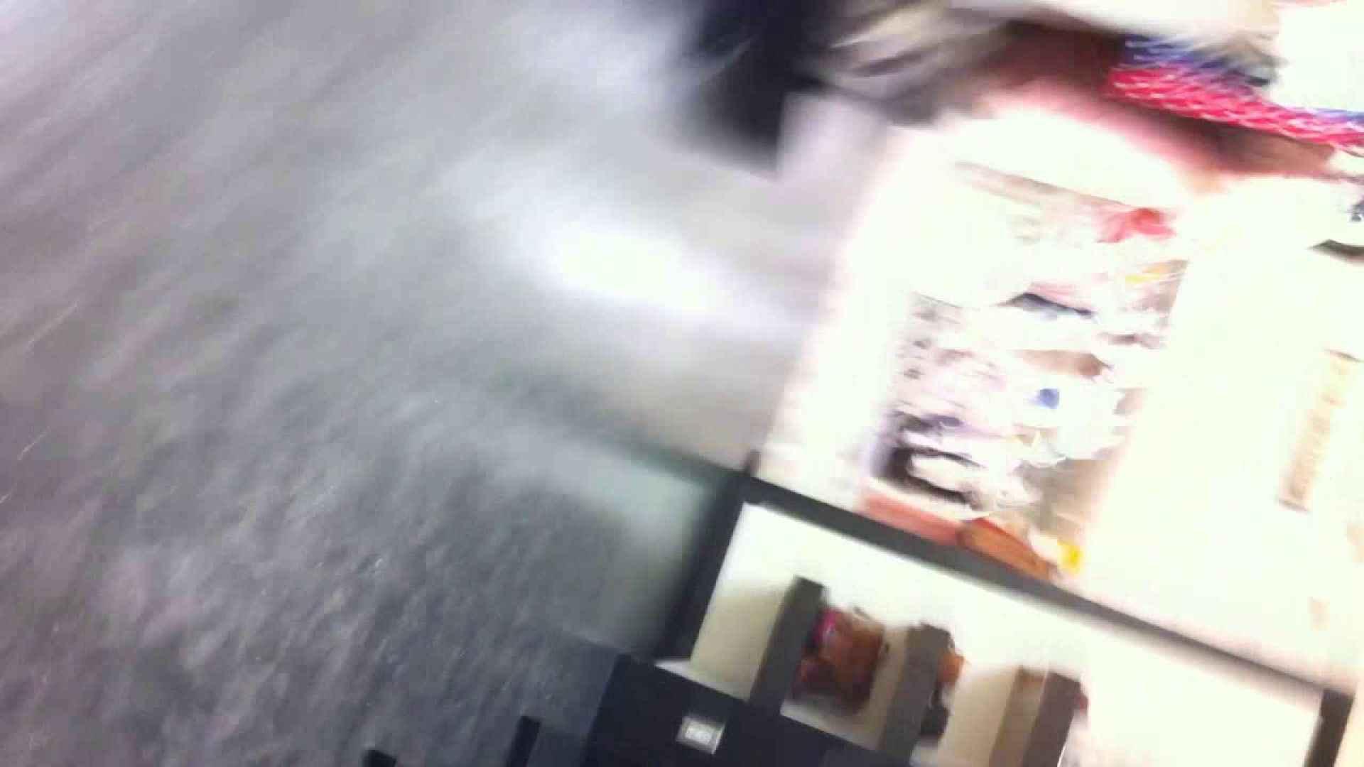 フルHD ショップ店員千人斬り! 大画面ノーカット完全版 vol.12 美しいOLの裸体 盗撮動画紹介 71pic 14